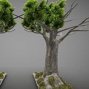 現代風格大樹模型