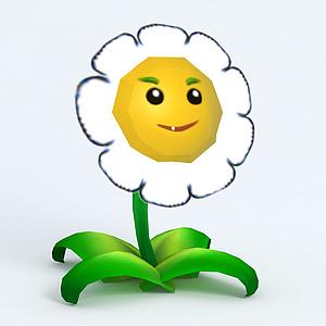 Marigold金盞花模型