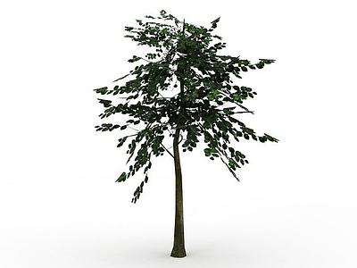 3d游戲樹木模型