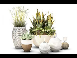 現代盆栽裝飾花瓶模型
