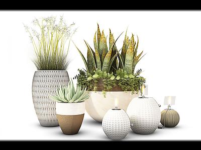 現代盆栽裝飾花瓶模型3d模型