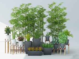現代綠植竹子模型
