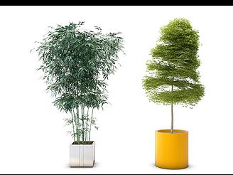 現代綠竹盆栽模型