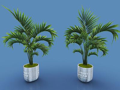 現代裝飾植物模型3d模型
