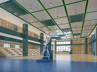 學校室內籃球館模型3d模型