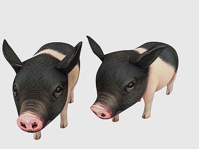小豬模型3d模型