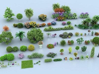 景觀樹組合模型3d模型