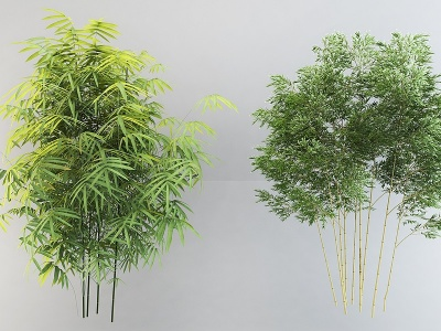 竹子植物盆栽組合模型3d模型