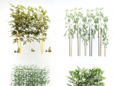 C4D竹子植物盆栽組合模型模型