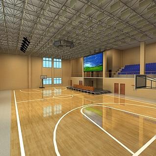 篮球场整体模型