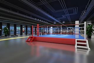 健身会所拳击馆3d模型