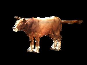 3d家牛模型