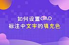 如何設置CAD標注中文字的填充色